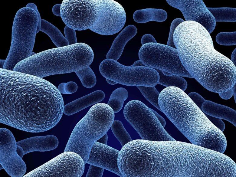 shutterstock_2173890_Bacteria